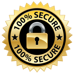 Image result for 100 percent secure transaction